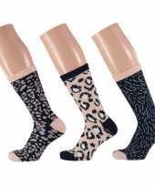 Dames fashion sokken pak luipaard beige navy maat