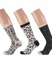 Dames fashion sokken pak luipaard beige zwart maat